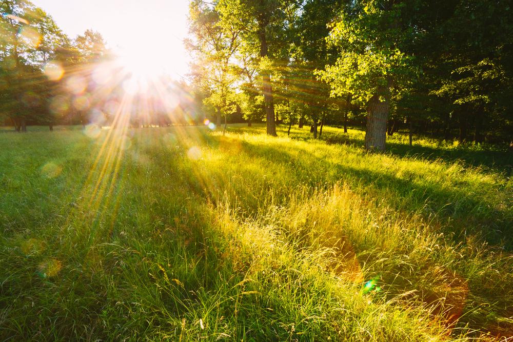 La Luce del Sole e gli Effetti sull'Occhio